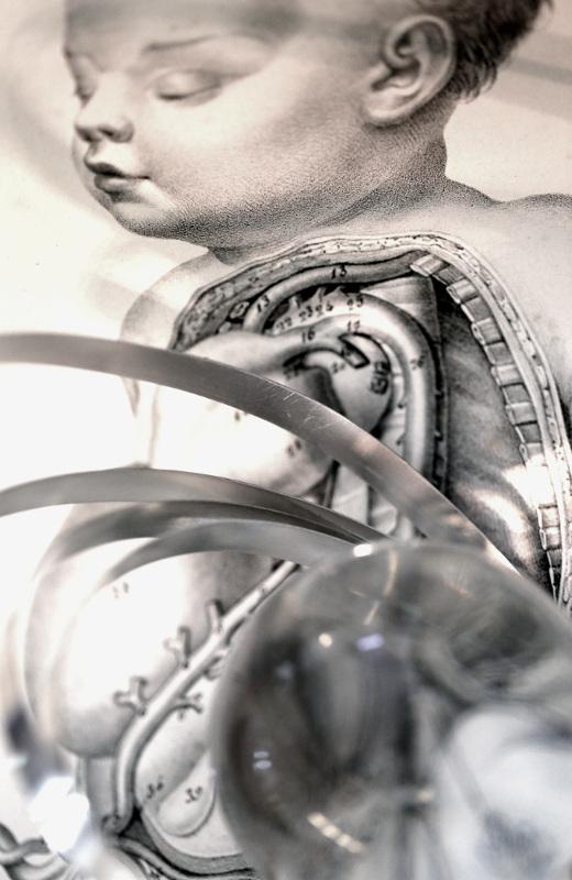 Homo Mechanicus - 18 - Stefano Russo